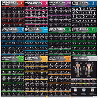 [12-PACK] Laminated Large Workout Poster Set - Perfect Workout Posters For Home Gym - Exercise Charts Incl. Dumbbell, Yoga...