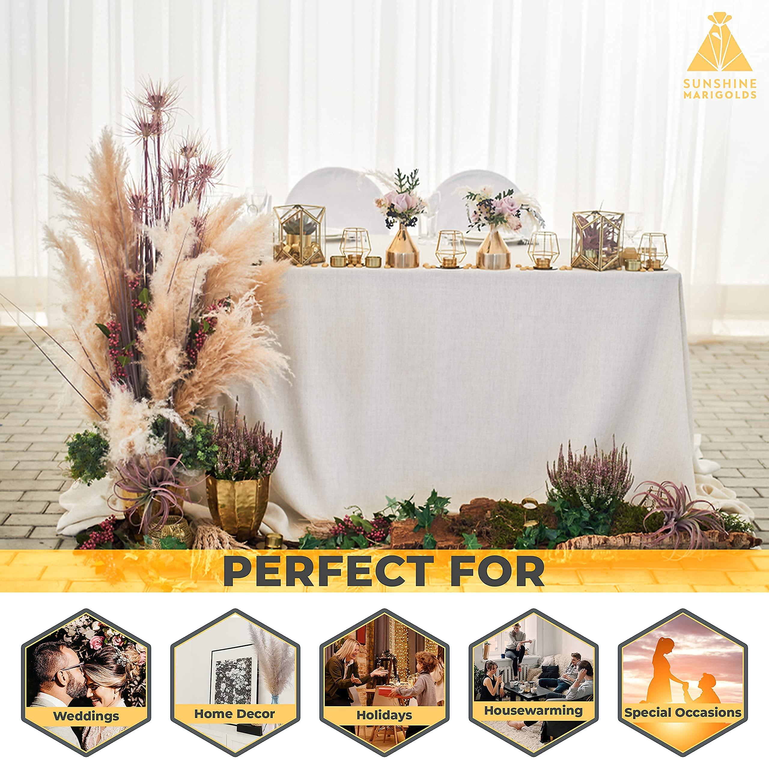 """Sunshine Marigolds Six (6) Tall Stems 4ft Long (48"""") Large Pampas Grass 2021 Best Award Jumbo Extra-Fluffy Plumes Naturally Dried Light Beige for Home, Wedding, Gifts Boho Decor, Floral Arrangements"""