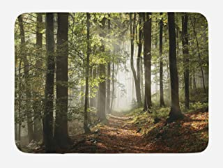 Lunarable Forest Bath Mat, Autumnal Forest Pathway in The Mountains with Mist in The Distance Wilderness Scene, Plush Bathroom Decor Mat with Non Slip Backing, 29.5