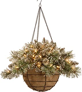 National Tree 20 Inch Glittery Bristle Pine Hanging Basket with White Tipped Cones and 50 Battery Operated Warm White LED Lights (GB3-300-20H-B1)