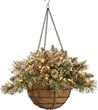 National Tree 20 Inch Glittery Bristle Pine Hanging Basket with White Tipped Cones and 50 Battery Operated Warm White LED ...