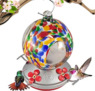Best globe hummingbird feeder Reviews