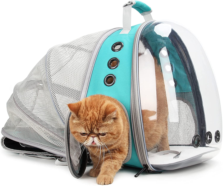 LOLLIMEOW Pet Carrier Backpack Bubble an Sale SALE% OFF Cats Elegant