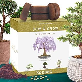 Nature's Blossom Bonsai Tree Kit – Grow 4 Types of Bonsai Trees From Seed...