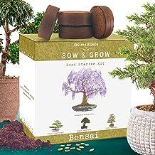 Nature's Blossom Bonsai Tree Kit – Grow 4 Types of Bonsai Trees From Seed...
