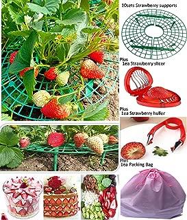 Best strawberry plant cradle Reviews