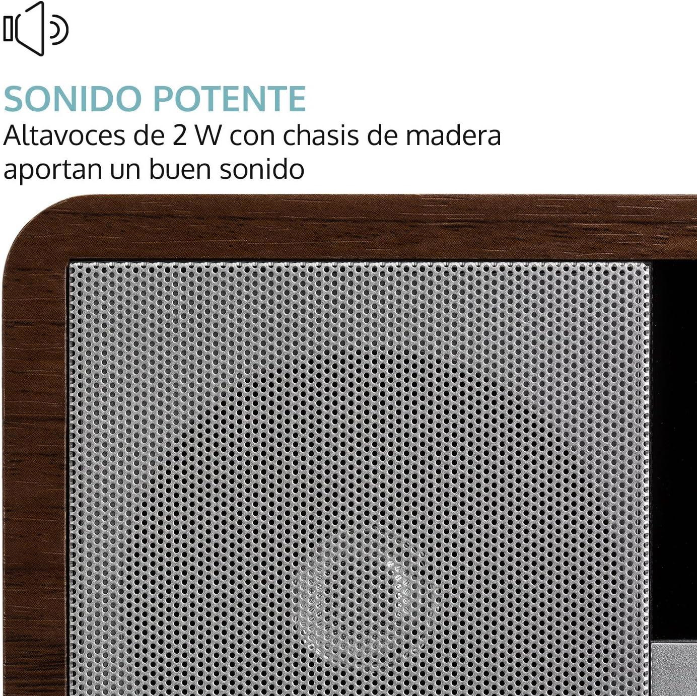 RDS AUX Alarma Dual Reproduce MP3 Temporizador auna Worldwide Mini WMA Blanco Floral FM Altavoz Mono 2 vatios Wi-Fi Dab+ Radio Internet Pantalla LCD Dab Puerto USB