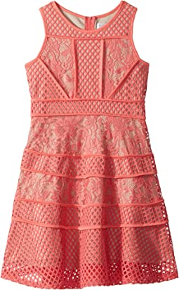 Us Angels Lace And Mesh Fit-and-Flare Dress (Big Kids)