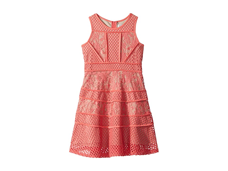 Us Angels Lace And Mesh Fit-and-Flare Dress (Big Kids) (Coral) Girl