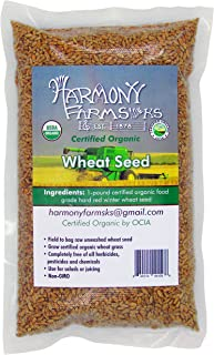 Certified Organic Hard Red Winter Wheat Seed - WHEATGRASS SEEDS FOR SPROUTING. 1 pound bag