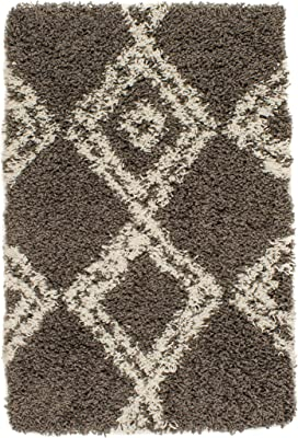 Super Area Rugs Shag Collection Luxury Area Rug, 2' x 3', Grey & White