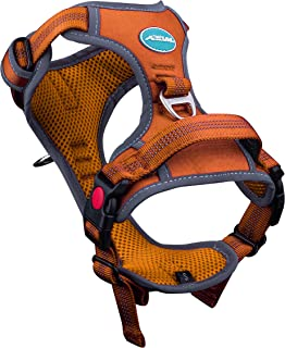 ThinkPet No Pull Harness Breathable Sport Harness with Handle - Reflective Padded Dog Safety Vest Adjustable Harness, Back/Front Clip for Easy Control