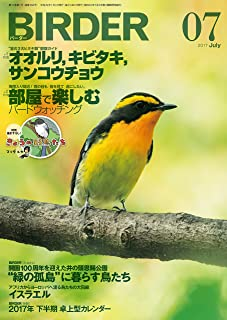 BIRDER (バーダー) 2017年 07月号 [雑誌]