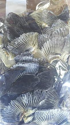 国産養殖 ふぐひれ100g(約120-150枚) 虎 中 トラフグ 業務用