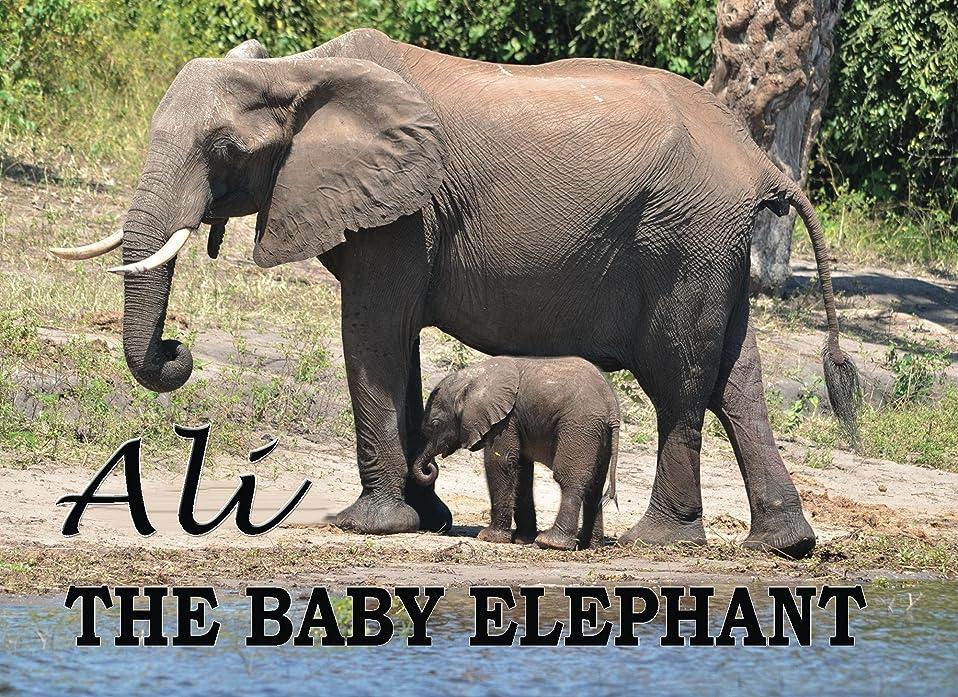 内なる暗黙小屋ALI - The Baby Elephant (English Edition)