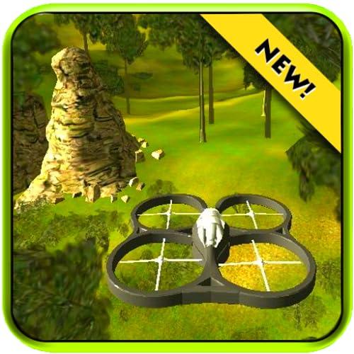 Drone Simulator Camera