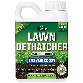 PetraTools Liquid Lawn Dethatcher