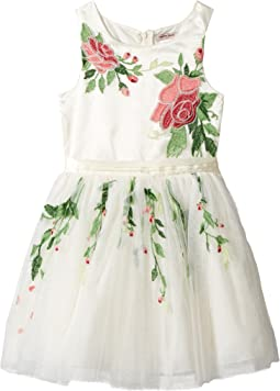 Embroidered Mesh Dress (Little Kids/Big Kids)