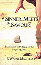 A Sinner Meets the Saviour: Encounters With Jesus in the Gospel of John (English Edition)