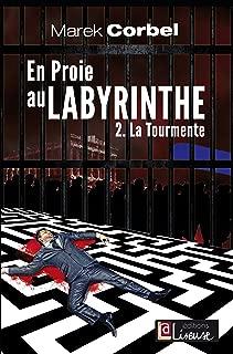 En proie au labyrinthe (Tome 2): La tourmente - Un roman noir politique (French Edition)
