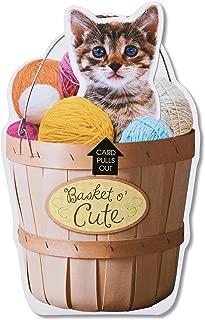 American Greetings Funny Birthday Card (Basket O' Cute)