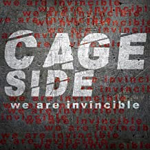 Best we are we are we are invincible Reviews