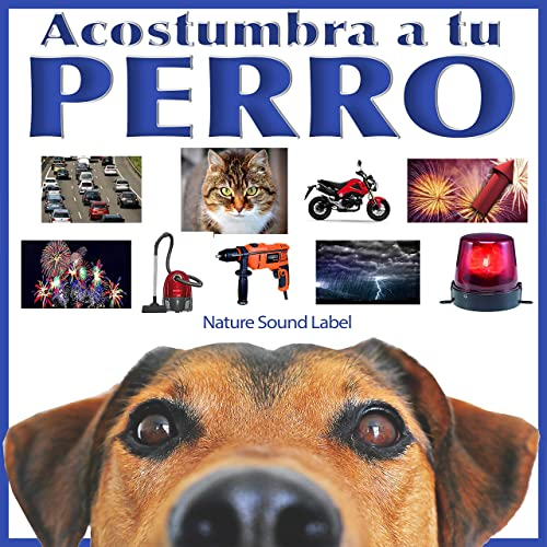 Acostumbra a Tu Perro by Nature Sound Label on Amazon Music - Amazon.com