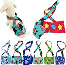 male dog belly band with suspenders