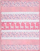 Sugar & Spice Bambino Minky Cuddle Kit Shannon Fabrics