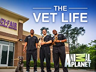 The Vet Life Season 1