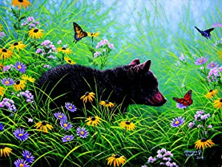 Best butterfly and bear Reviews
