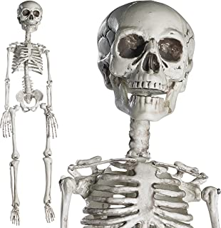 inexpensive halloween skeletons
