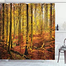 Ambesonne Farm House Decor Collection, Autumn in Brakelbos Forest Fall Park Golden Sunlight Photography, Polyester Fabric Bathroom Shower Curtain, 84 Inches Extra Long, Yellow Olive Sienna
