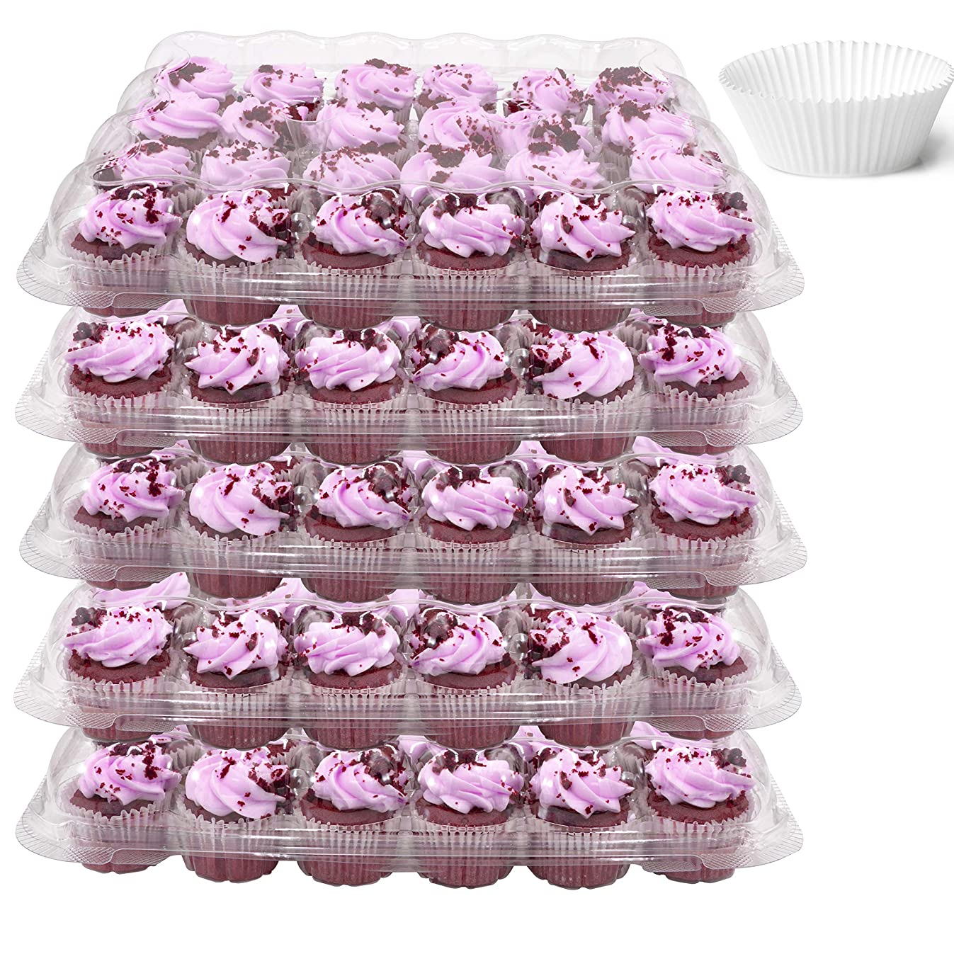 24 Compartment Mini Cupcake Containers, Set of 5 Disposable Plastic High Dome Lid Cupcake Boxes for Transporting Small Cupcakes with Tall Icing