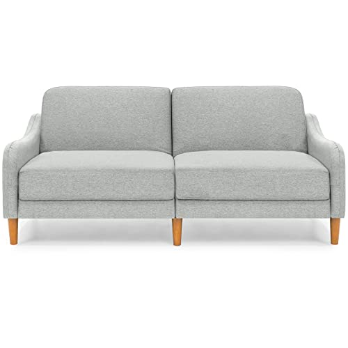 Midcentury Modern Sofa Sleeper: Amazon.com