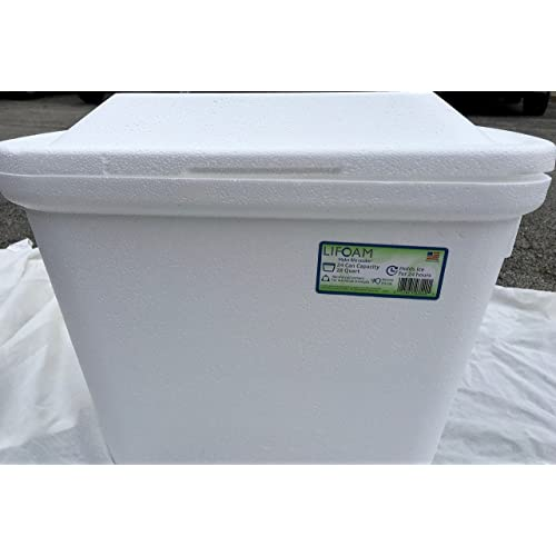 Styrofoam Coolers: Amazon com