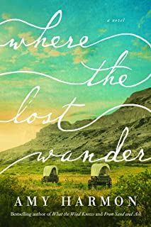 Where the Lost Wander: A Novel