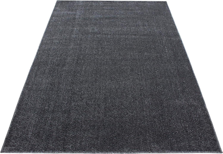 Carpetsale24 Teppich Kurzflor Einfarbig Modern Wohnzimmer Melierung Uni Grau Grau Grau Oeke-Tex, Maße 280x370 cm B07JB2YWJS 5195bb