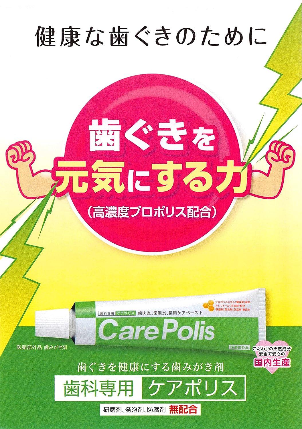 カナダ芝生ブロック薬用歯磨 ケアポリス 75g×4箱  医薬部外品
