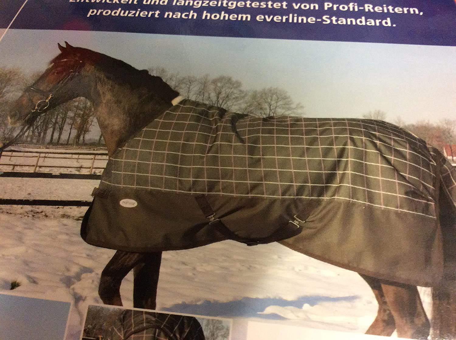 Busse Pebblelmadeira 145 Thermal Outdoor Blanket Professional Light Checked Coffee
