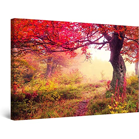 Ahorn Baum Rot Wandbild auf Keilramen bepannt A05881 Leinwandbild quadratisch