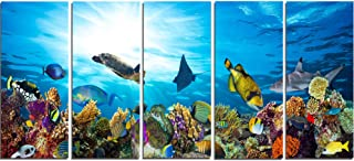 Designart Colorful Coral Reef with Fishes-Seascape Photo Metal Wall Art-MT7216-60x28-5 Panels, 28'' Hx60'' Wx1'' D 5PE