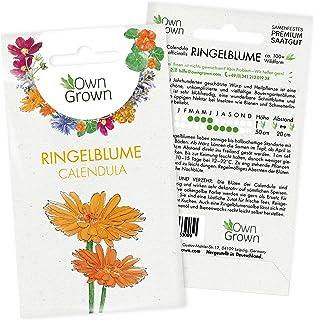 Wilde Ringelblumen Samen: Premium Ringelblume Samen für ca.