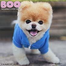 Boo 2017 Calendar: The World's Cutest Dog