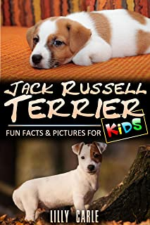 Jack Russell Terrier: Fun Facts & Pictures For Kids