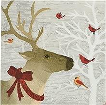 Best christmas reindeer paper plates Reviews