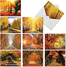 10 Blank 'Fall Foliage' Note Cards with Envelopes 4 x 5.12 inch, Boxed Set of Autumn Landscape Stationery - All-Occasion Greeting Cards for Weddings, Holidays and Thank Yous M4971OCB-B1x10
