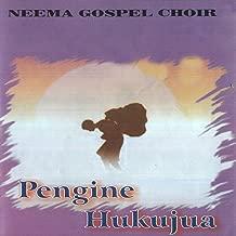 Best neema gospel choir mp3 Reviews