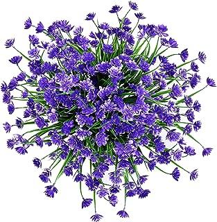 hanging purple man flower