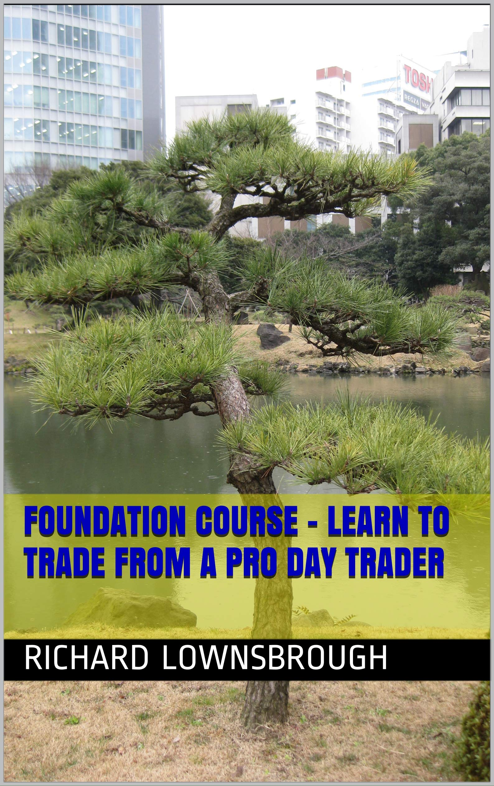Foundation Course - Learn to trade from a Pro Day Trader